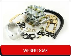 Weber DGAS