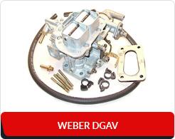 Weber DGAV
